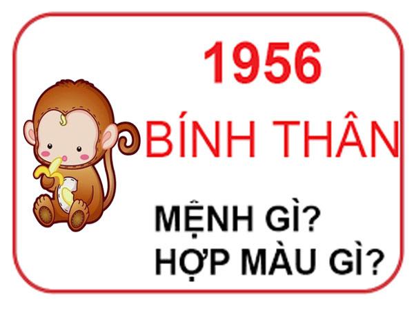 Người sinh năm 1956 mệnh nào? hợp hướng nào? hợp đeo đá màu gì?