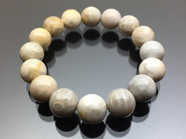 Đá San Hô - Tổng quan, ý nghĩa và công dụng của đá san hô trong phong thủy là gì?