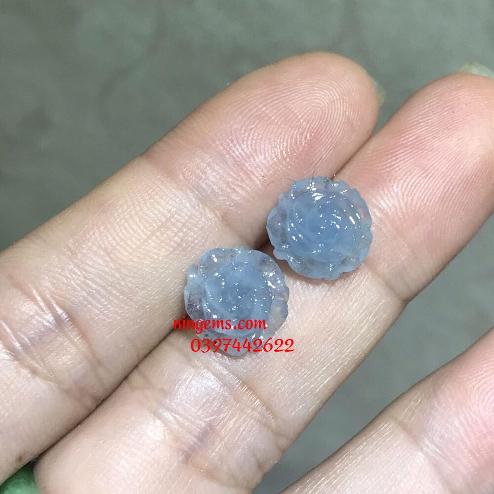 Hoa mẫu đơn đá aquamarine