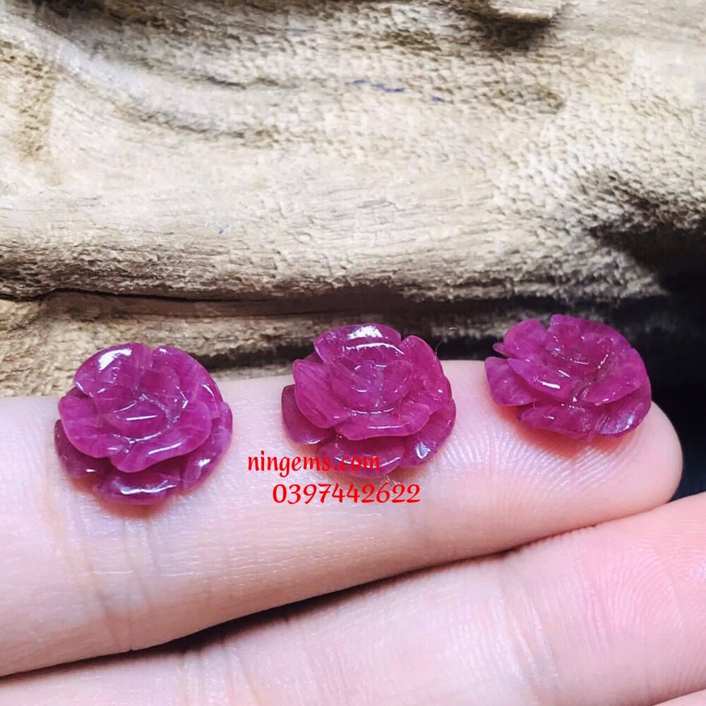Hoa mẫu đơn đá ruby